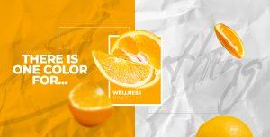 Tips para elegir los colores de tu Diseño Web